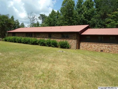 412 County Road 281, Fort Payne, AL 35967 - #: 1096700