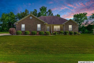 114 Eagle View Drive, New Market, AL 35761 - #: 1096721