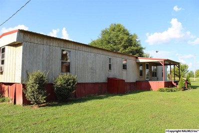 633 County Road 91, Pisgah, AL 35765 - #: 1096775