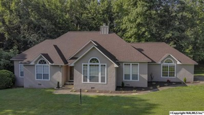 1224 Daisy Lane, Fort Payne, AL 35967 - #: 1096843