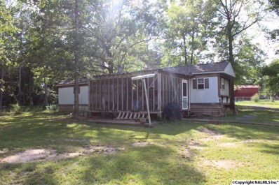 20 County Road 719, Cedar Bluff, AL 35959 - #: 1096975