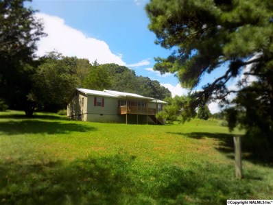 2100 Rock Hill Road, Guntersville, AL 35976 - #: 1097107