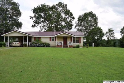 1036 Gizzard Point Road, Scottsboro, AL 35768 - #: 1097255
