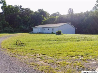 13390 Alabama Highway 117, Valley Head, AL 35989 - #: 1097499