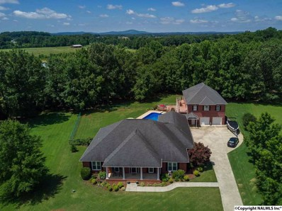 306 Golden Harvest Drive, New Market, AL 35761 - #: 1097720