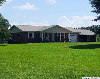 363 Woodview Road, Henagar, AL 35978 - #: 1097818