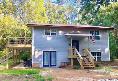 244 County Road 671, Cedar Bluff, AL 35959 - #: 1097827