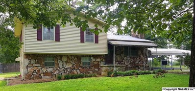 247 Sherwood Blvd, Fyffe, AL 35971 - #: 1097835