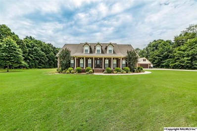 4616 Elkwood Section Road, Ardmore, AL 35739 - #: 1097876