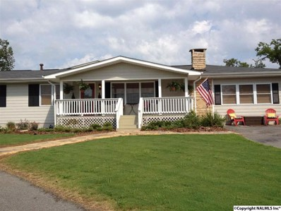 466 Warrenton Shores Drive, Guntersville, AL 35976 - #: 1098040