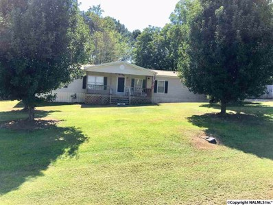 4769 Leeth Gap Road, Boaz, AL 35956 - #: 1098313