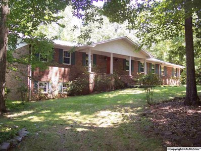 252 Commodore Street, Scottsboro, AL 35769 - #: 1098324