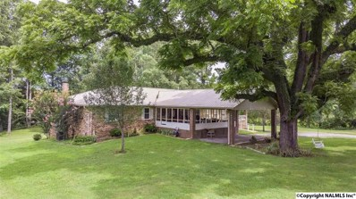 127 County Road 906, Fort Payne, AL 35967 - #: 1098443