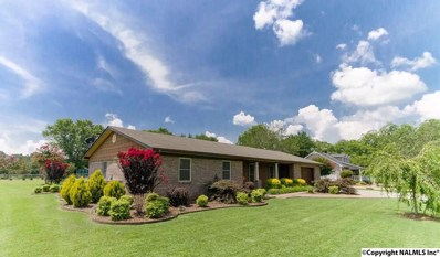 1707 Byron Road, Scottsboro, AL 35769 - #: 1098448