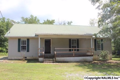 3755 County Road 83, Collinsville, AL 35961 - #: 1098554