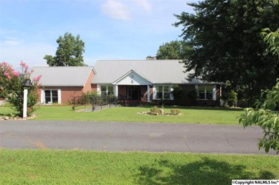 67 Bluff View Drive, Fort Payne, AL 35968 - #: 1098858