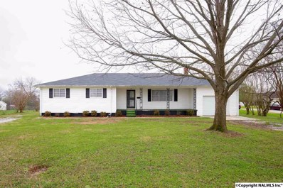 1006 Montgomery Avenue, Sheffield, AL 35660 - #: 1098935