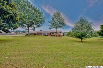 918 Rolan Gooch Road, Toney, AL 35773 - #: 1098987