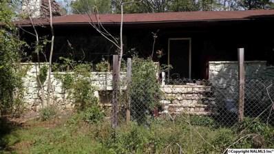 2105 Cottonville Road, Grant, AL 35747 - #: 1099154