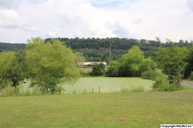 801 Airport Road, Fort Payne, AL 35968 - #: 1099211