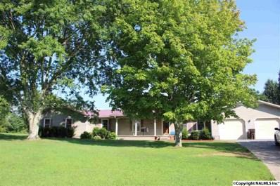 3371 County Road 8, Woodville, AL 35776 - #: 1099219