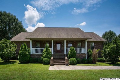 234 County Road 36, Hollywood, AL 35752 - #: 1099249