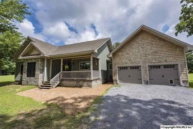 220 County Road 654, Mentone, AL 35984 - #: 1099363