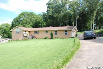 117 Roberta Road SE, Huntsville, AL 35802 - #: 1099443