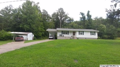 10124 Owls Hollow Road, Gadsden, AL 35901 - #: 1099452