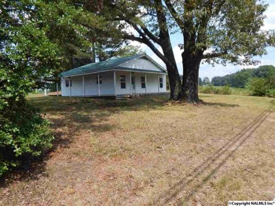 20870 Alabama Highway 117, Ider, AL 35981 - #: 1099565