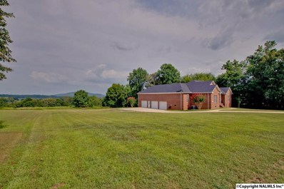 331 Morning View Drive, Harvest, AL 35749 - #: 1099683