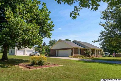 255 Morris Lane, Toney, AL 35773 - #: 1099757