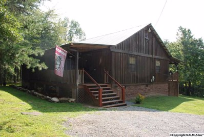 400 County Road 369, Fort Payne, AL 35968 - #: 1099762