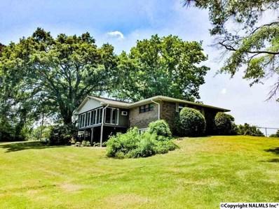 1150 County Road 167, Leesburg, AL 35983 - #: 1099947