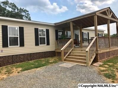 5802 Alabama Hwy 68, Gaylesville, AL 35973 - #: 1100066