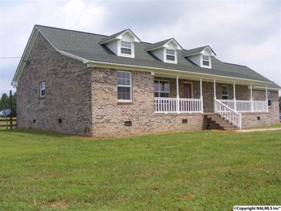 197 County Road 432, Fyffe, AL 35971 - #: 1100150