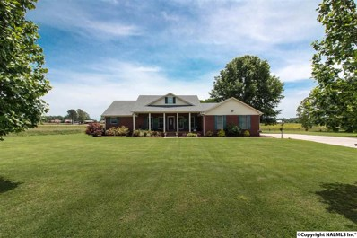 11980 New Cut Road, Athens, AL 35611 - #: 1100181