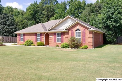 110 Duck Spring Road, Toney, AL 35773 - #: 1100185