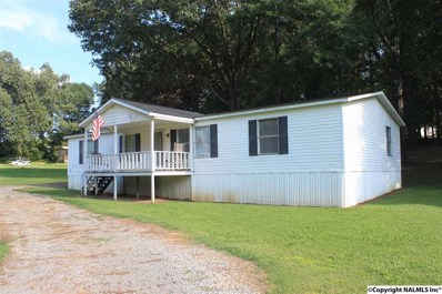44 Elmer Pierce Road, Guntersville, AL 35976 - #: 1100282