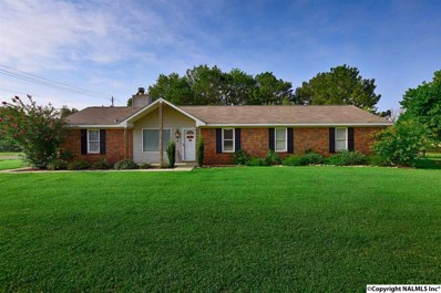 124 Collins Lane, Meridianville, AL 35759 - #: 1100342