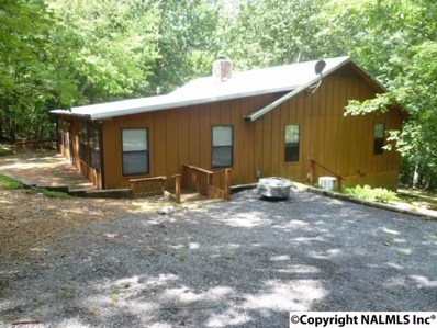 73 County Road 66, Fort Payne, AL 35967 - #: 1100439