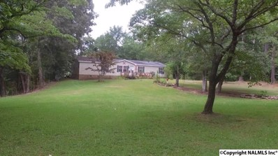 495 County Road 272, Cullman, AL 35057 - #: 1100571
