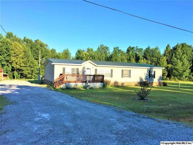 191 County Road 287, Hillsboro, AL 35643 - #: 1100573