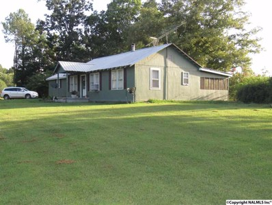 4947 County Road 751, Valley Head, AL 35989 - #: 1100574