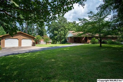 313 Mud Creek Circle, Hollywood, AL 35752 - #: 1100621
