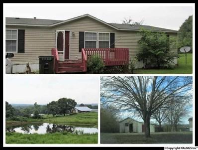 313 County Road 378, Boaz, AL 35957 - #: 1100780