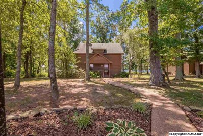 145 County Road 314, Town Creek, AL 35672 - #: 1100785