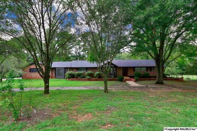 356 Williams And Broad Drive, Brownsboro, AL 35741 - #: 1100816