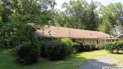 1316 Lakeshore Street, Guntersville, AL 35976 - #: 1100846
