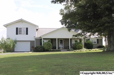 1743 County Road 23, Crossville, AL 35962 - #: 1100944